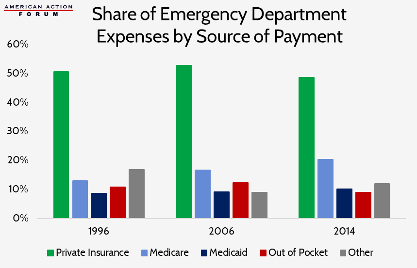 Share of ED Expenses by Source of Payment
